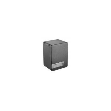 Générateur de fumée (Brouillard) Bandit à diffusion verticale