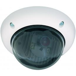 Caméra D24M-SEC Caméras IP